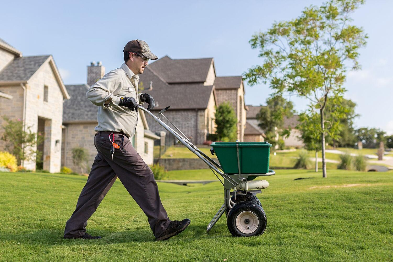 texas grass being fertilized by lawn care technician