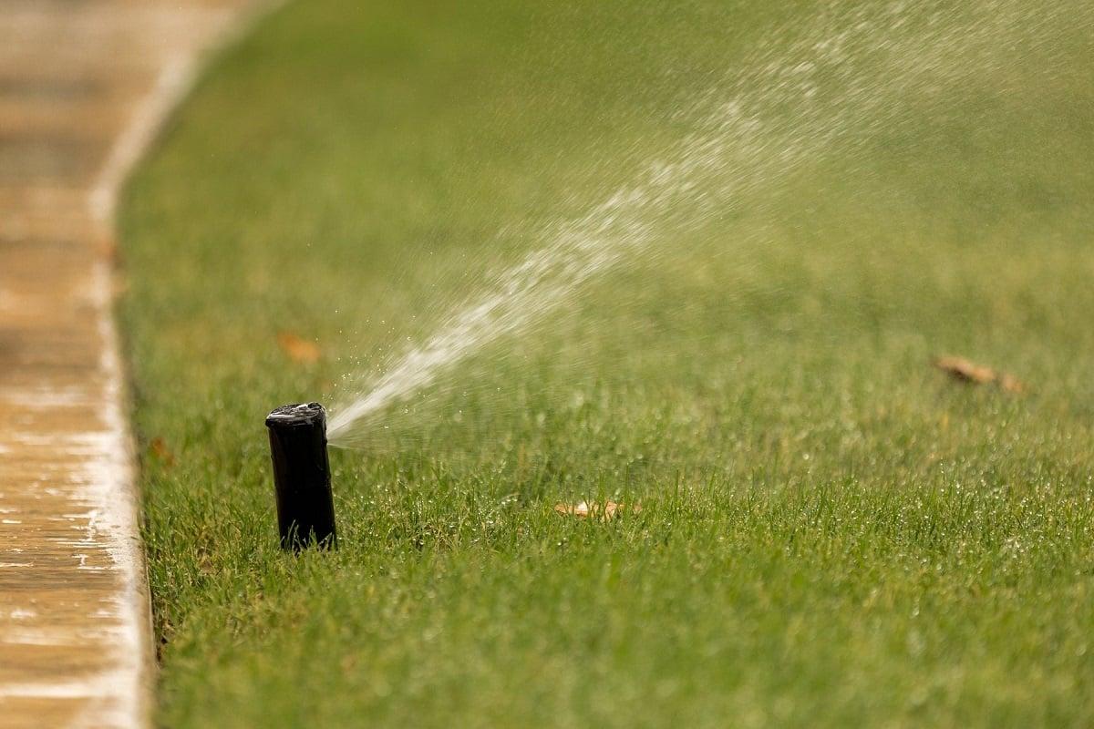 irrigation sprinkler overwatering on sidewalk