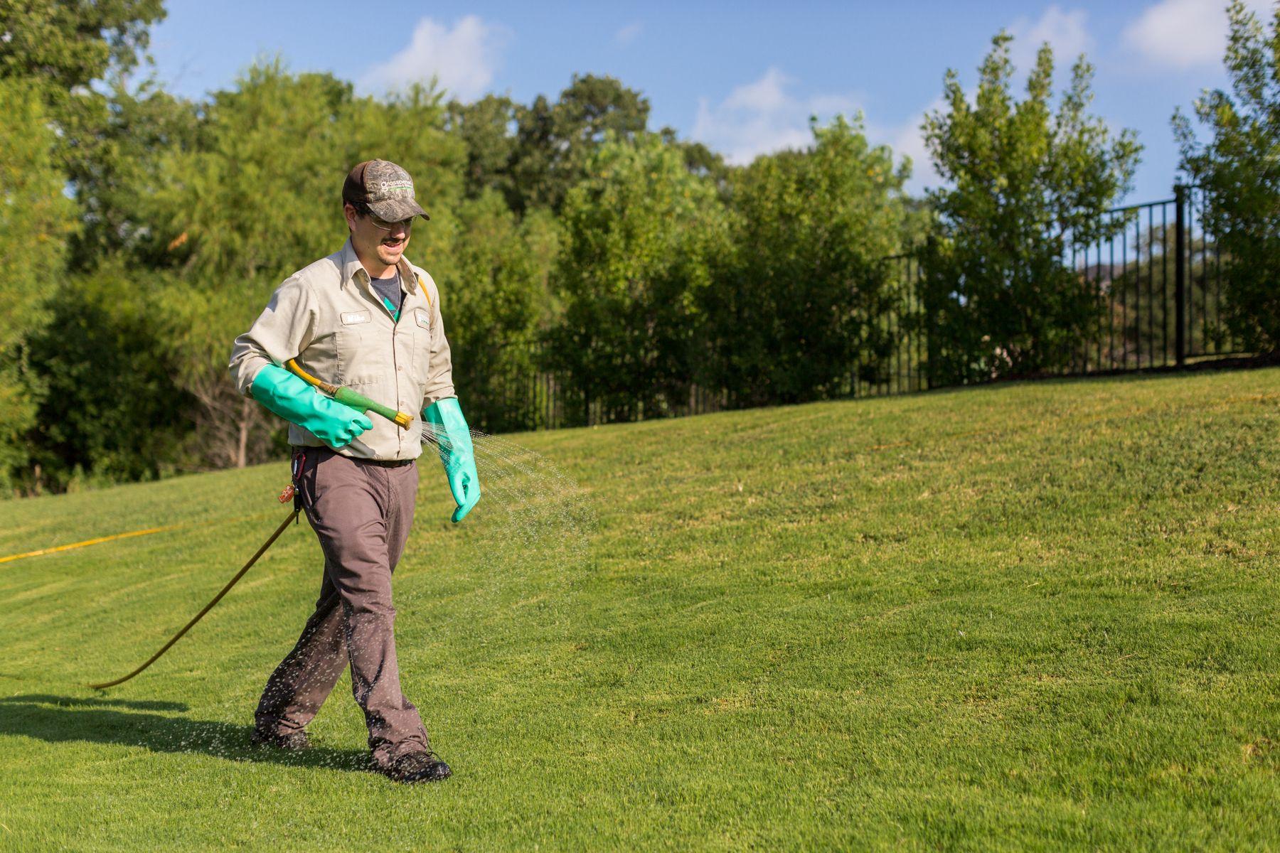 lawn care technician spraying a lawn