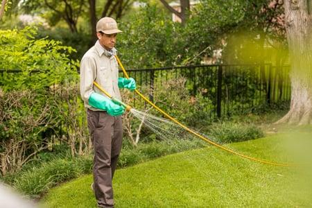 lawn technician spraying 462