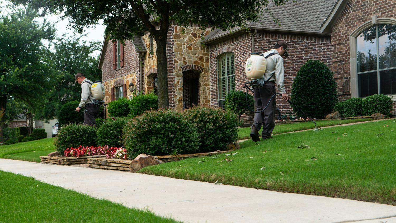 lawn care technician jobs Dallas TX