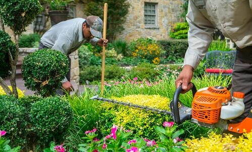 grassperson-crew-bush-shrub-flowers-trimming-maintenance-5
