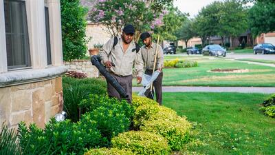 Grassperson crew performing lawn maintenance services