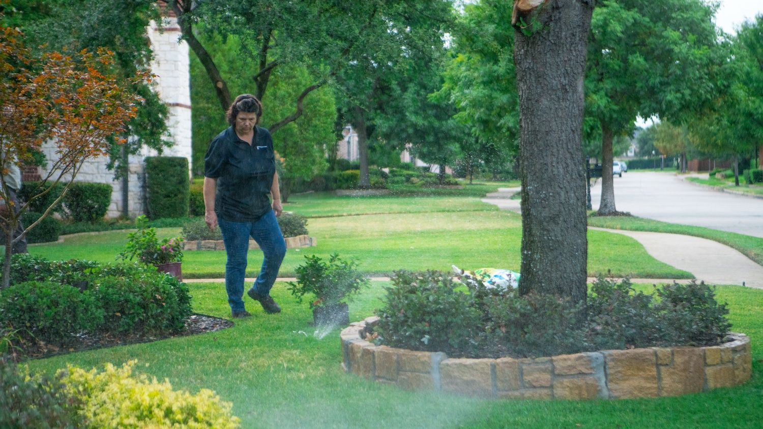 lawn irrigation system inspection