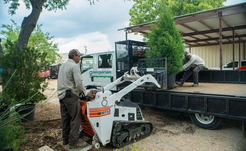grassperson-crew-moving-tree-planting-5