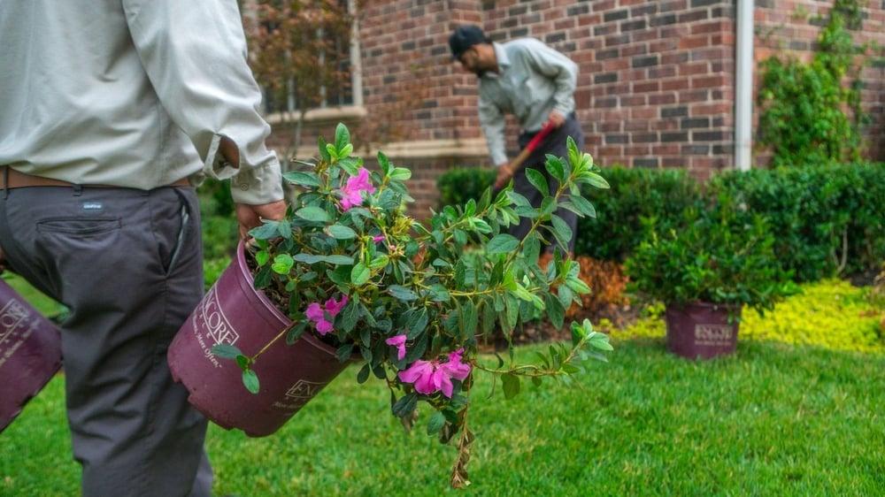 grassperson-crew-planting-2