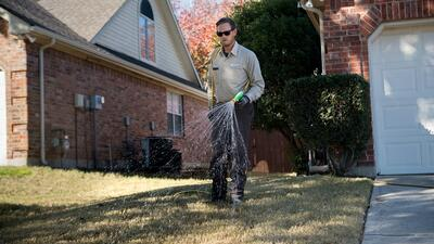 lawn technician spraying to prevent lawn pests