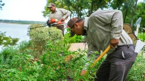 grassperson-crew-trimming-pruning-shrubs