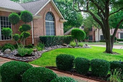 beautiful lawn treated by Grassperson lawn care and landscaping in Flower Mound, TX
