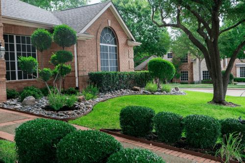 house-walkway-shrubs-bushes-trees-rocks-lawn
