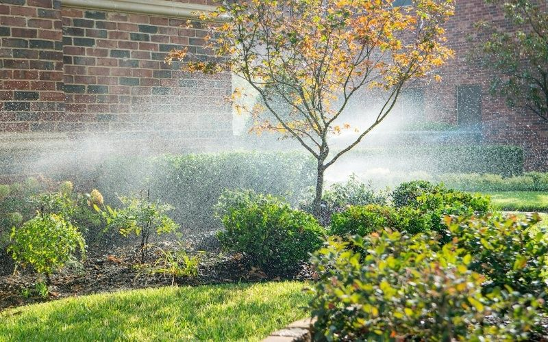 irrigation system spraying shrubs and lawn