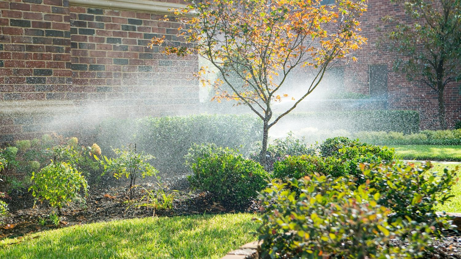irrigation watering a lawn, shrubs, trees, and perennials