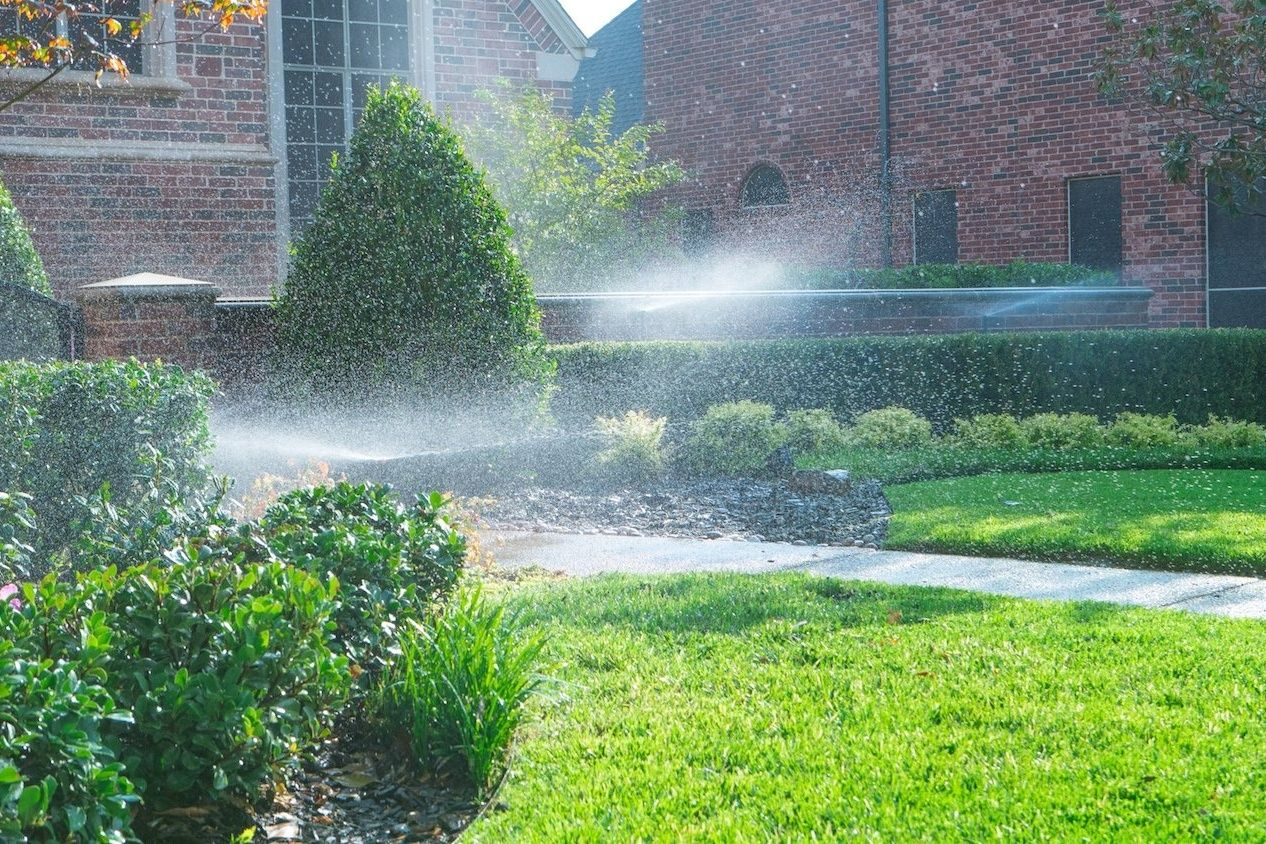 watering lawn and shrubs with irrigation in Texas lawn