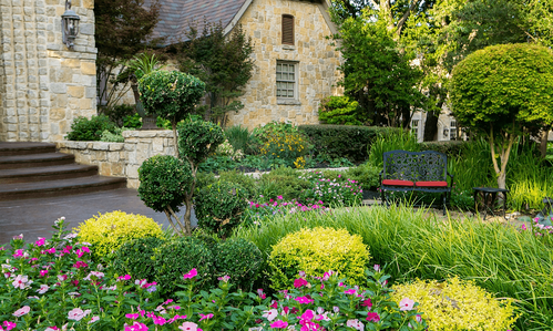 house-steps-plants-flowers-shrubs-bushes-trees-seating-bench
