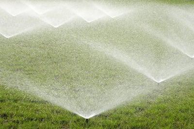 irrigation sprinklers in lawn