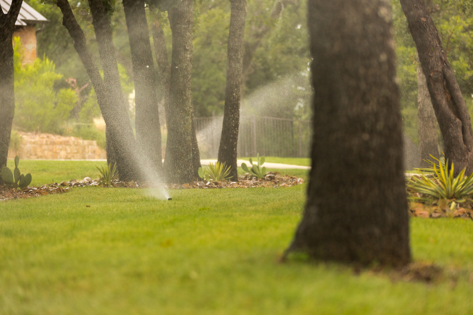 Most Frequently Asked Questions About Sprinkler Systems in North Texas