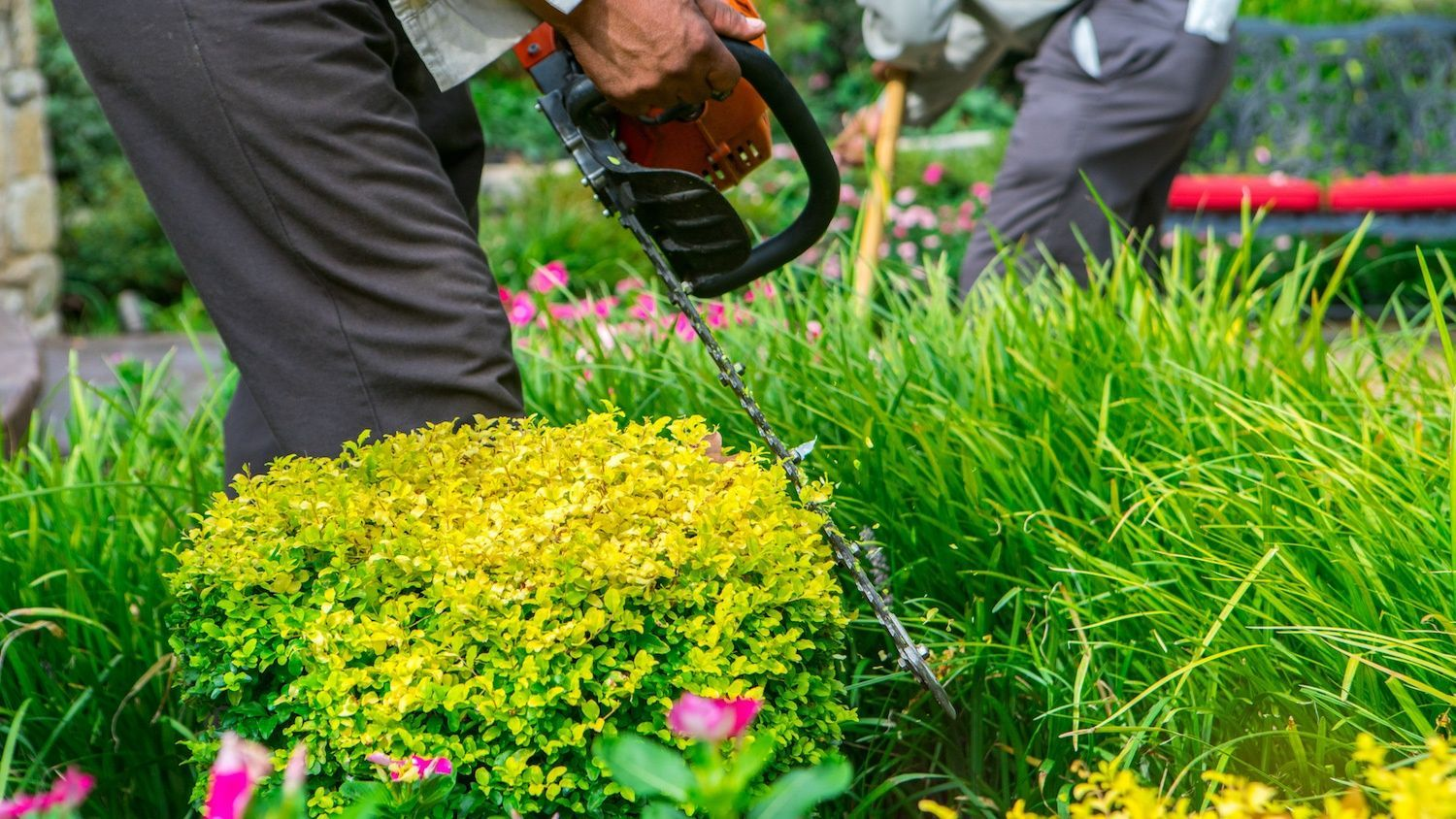 7 Questions You Can Expect During a Landscaping Job Interview